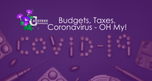 CarefreeBook - Budgets, Taxes, Coronavirus